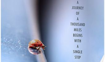 a journey of a thousand miles begins with a single step sign on a white background in black text and a red ladybug