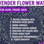 Benefits of Lavender Hydrosol for Acne | Properties & How to Use