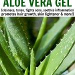 Beauty Benefits of Aloe Vera Gel for Beautiful Hair & Skin
