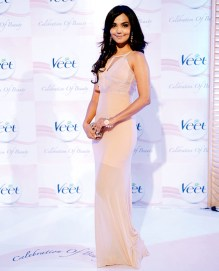 Aamina Sheikh - VCB2013