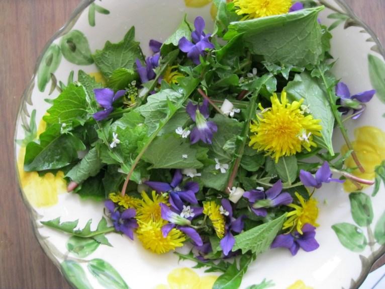 Wild-Spring-Salad1