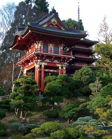 perfume-questionnaire-S-Perfume-Nobi-Shioya-odore-tempio-alberi