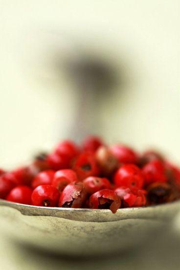 Marni-Spice-pepe-rosa