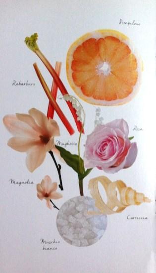 rose-de-vigne-caudalie-3