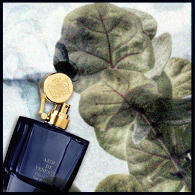 perfume-questionnaire-Robert-Gerstner-11
