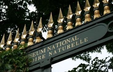 Jardin-des-Plantes-Grille-d'entrée---630x405---©-MNHN-Mathieu-Carton_block_media_big