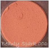 Generic Blush Palette blush 006