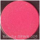 Generic Blush Palette blush 009