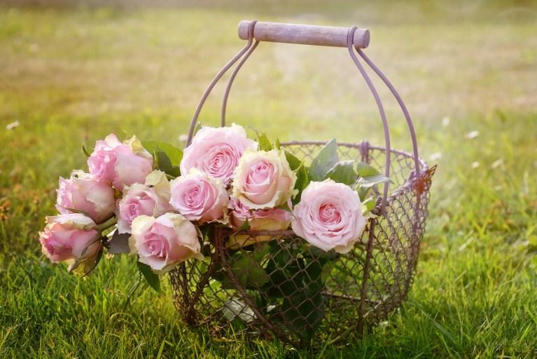 Ružina vodica recept: kako napraviti ružinu vodicu