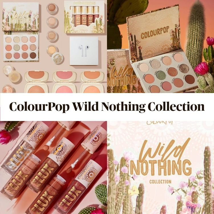 Sneak Peek! ColourPop Wild Nothing Collection