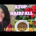 DIY ANTI-HAIR FALL MASK :- Hibiscus hair veil   Disagreeable Hair Growth   Conclude Hairfall   Dandruff Free
