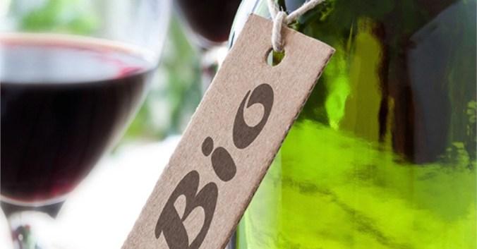 Blog vin Beaux-Vins dégustation vins oenologie bio biologique