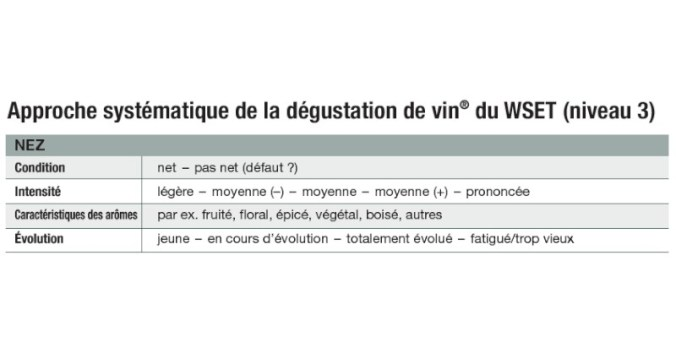 Blog Beaux-Vins dégustation déguster nez oenologie sentir vin analyse