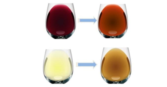 blog Beaux-Vins vin oenologie Dégustation comment conclure une dégustation de vin evolution