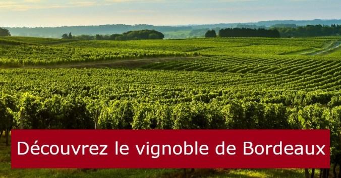 blog vin Beaux-Vins oenologie dégustation vins vignoble Bordeaux
