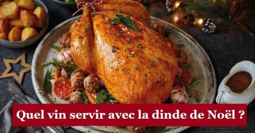 blog vin beaux-vins oenologie dégustation dinde noel
