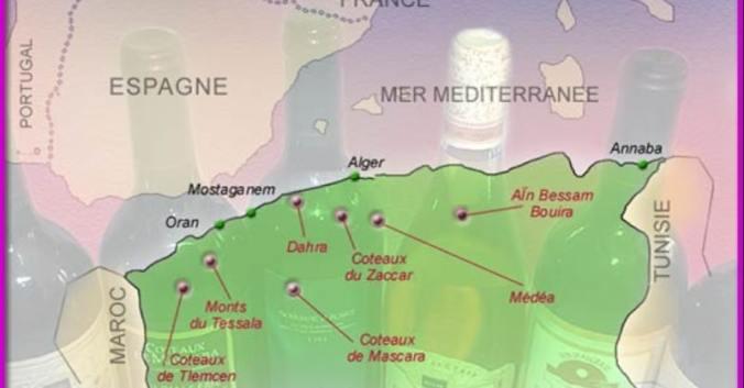 blog vin beaux-vins vignoble algérie