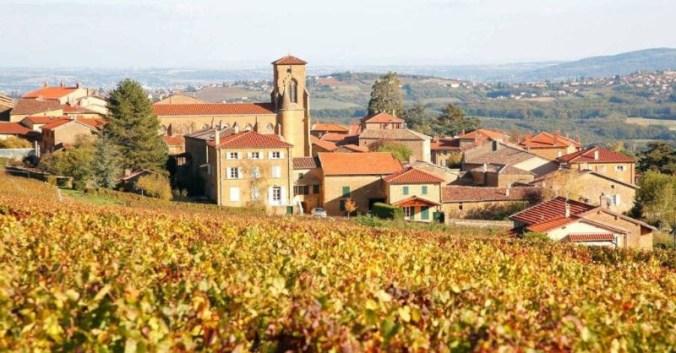 Découvrez vignoble beaujolais deconfinement lyon