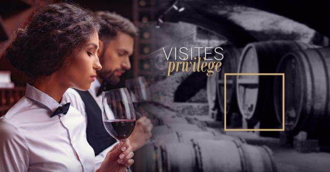 Découvrez vignoble beaujolais visites privilège lyon