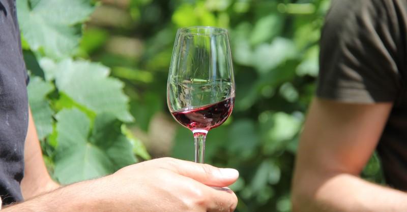 blog vins beaux-vins Lyon universite du vin croix rousse deambulation gourmande vin canuts