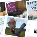 Blog vin Beaux-Vins evenements sorties oenologie degustation septembre 2020(1)