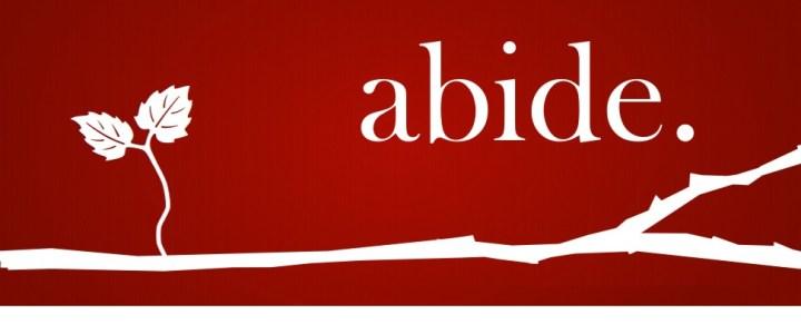 Abide – Week 3 – Abide In Him