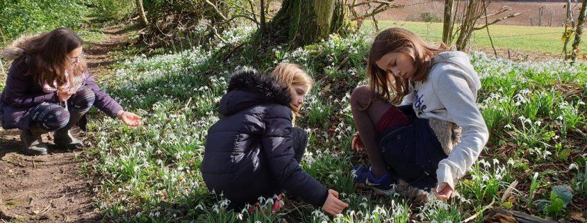 Snowdrop girls. Credit: James Wallace