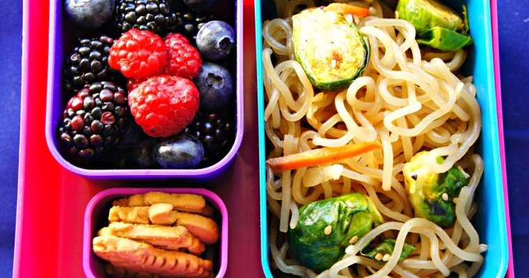 Jumping on the Bento Box Bandwagon: Healthy Fun Bento Lunch Ideas