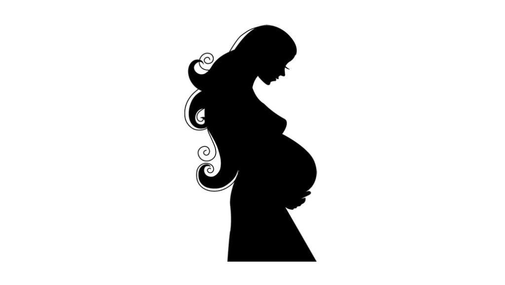 El embarazo semana a semana