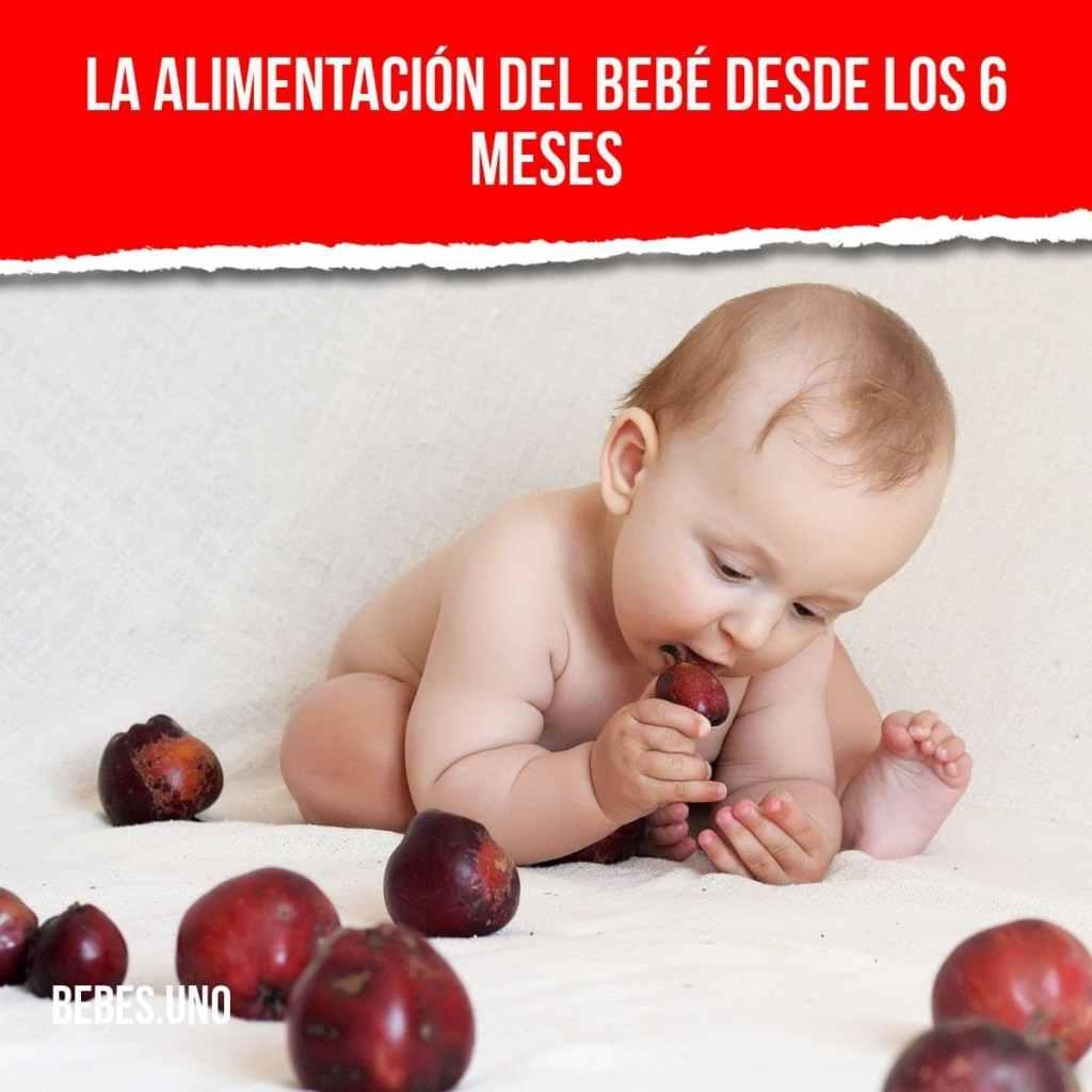 La alimentación del bebé desde los 6 meses