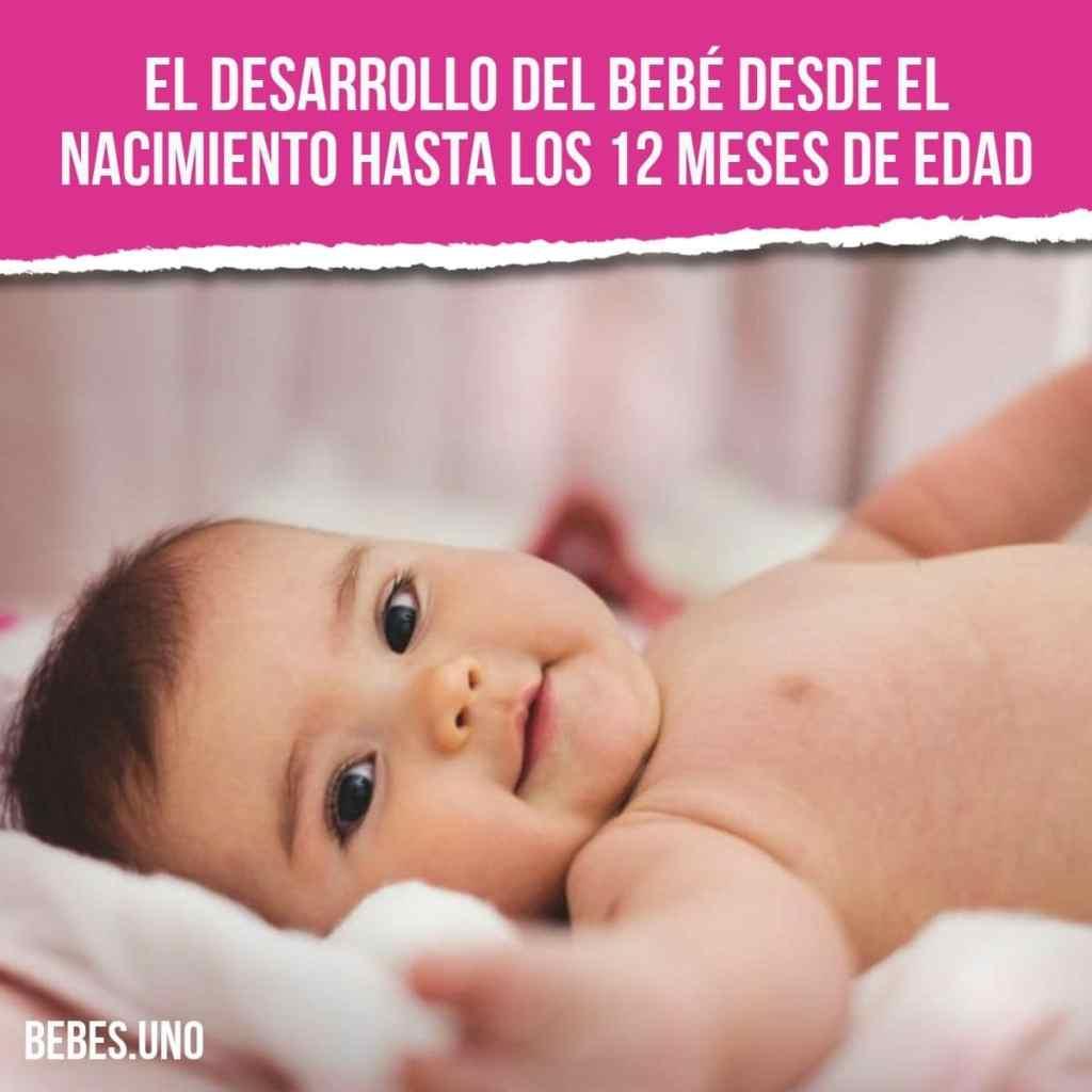 El desarrollo del bebé desde el nacimiento hasta los 12 meses de edad