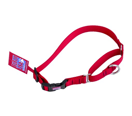 martingale dog collar red