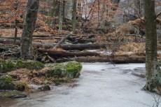 2018-01-12-Cunningham Falls-Frozen Creek
