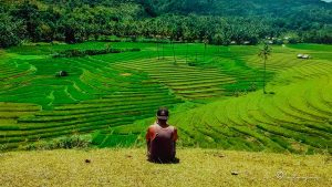 5 Reasons why you need to visit Cadapdapan Rice Terraces in Bohol