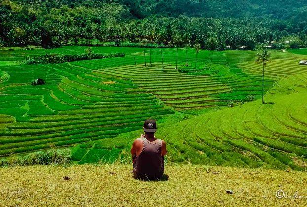 enjoying the view of cadapdapan rice terraces bohol philippines