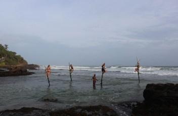 stickfishing Welingama