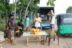 Pit stop for Coconut water and fruits