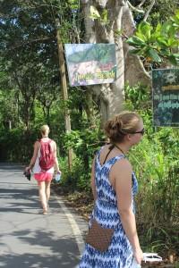 Walk to the Jungle beach