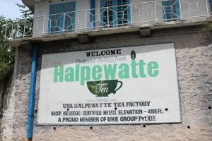 Halpewatte