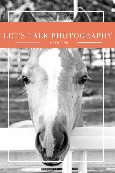 Let's Talk Photography, Part 5: Aperture