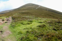 That's the path up Carn Liath. You can't miss it