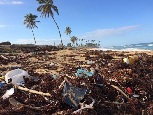 Beach pollution in the Dominican Republic, mostly plastic. Photo by Dustan Woodhouse on Unsplash.