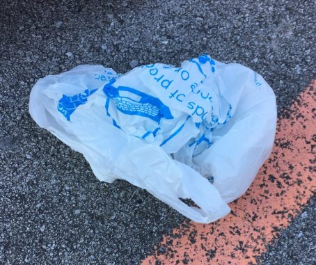 Plastic bag found in a parking lot not far from the Tennessee River. Photo by me.