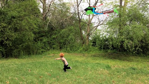 My son flying a kite in the backyard.