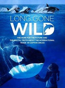 Long Gone Wild film poster