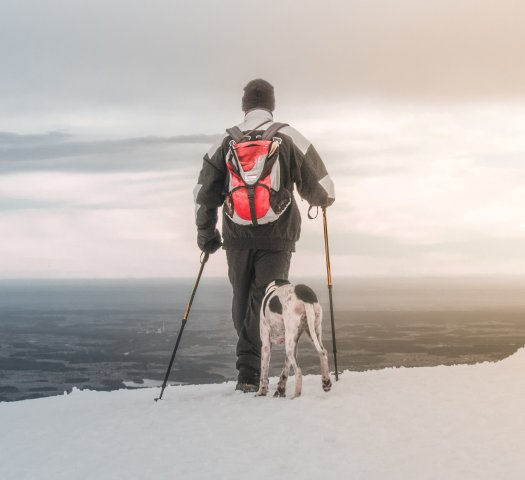 Man skiing with dog