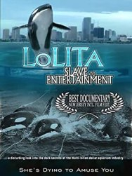 Lolita slave to entertainment film cover art