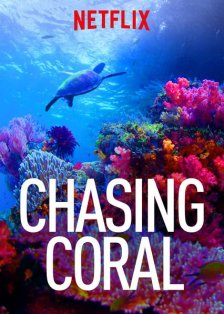 Chasing Coral from Netflix cover art, a sea turtle swimming next to a coral reef