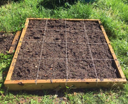 Garden box using compost as soil.