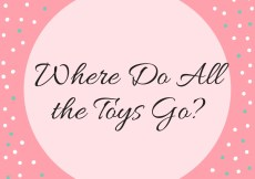 Where Do All the Toys Go?
